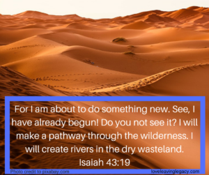 for-i-am-about-to-do-something-new-see-i-have-already-begun-do-you-not-see-it-i-will-make-a-pathway-through-the-wilderness-i-will-create-rivers-in-the-dry-wasteland